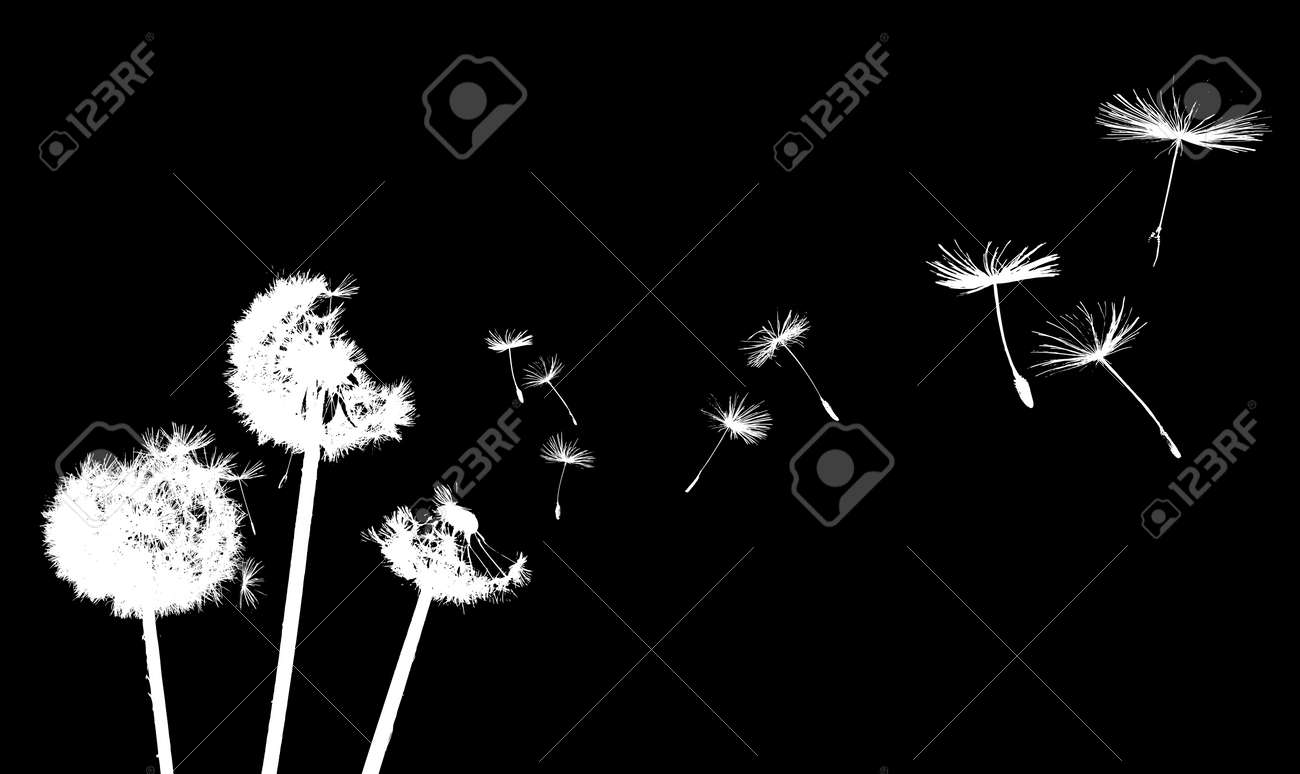 dandelion in the wind Stock Vector - 3822309