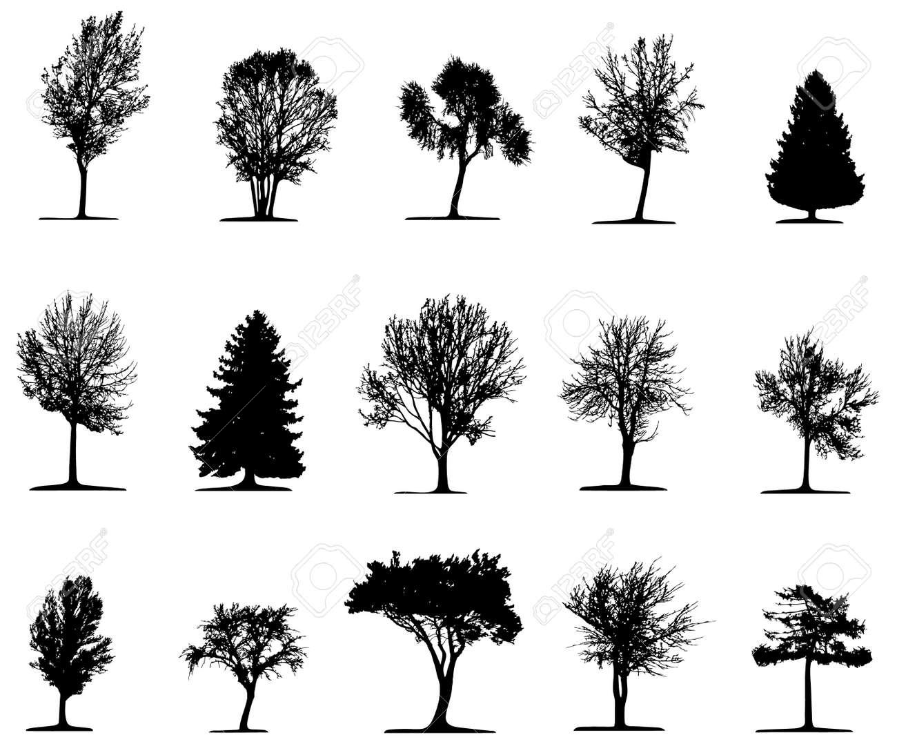 Trees - 3849377