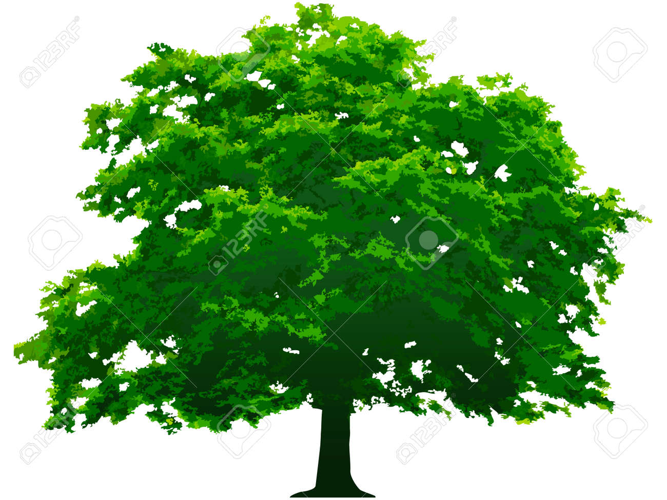 Vector tree. This image is a vector illustration and can be scaled to any size without loss of resolution - 4397433