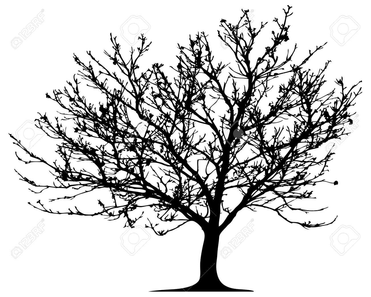 Vector tree. This image is a vector illustration and can be scaled to any size without loss of resolution - 4465828