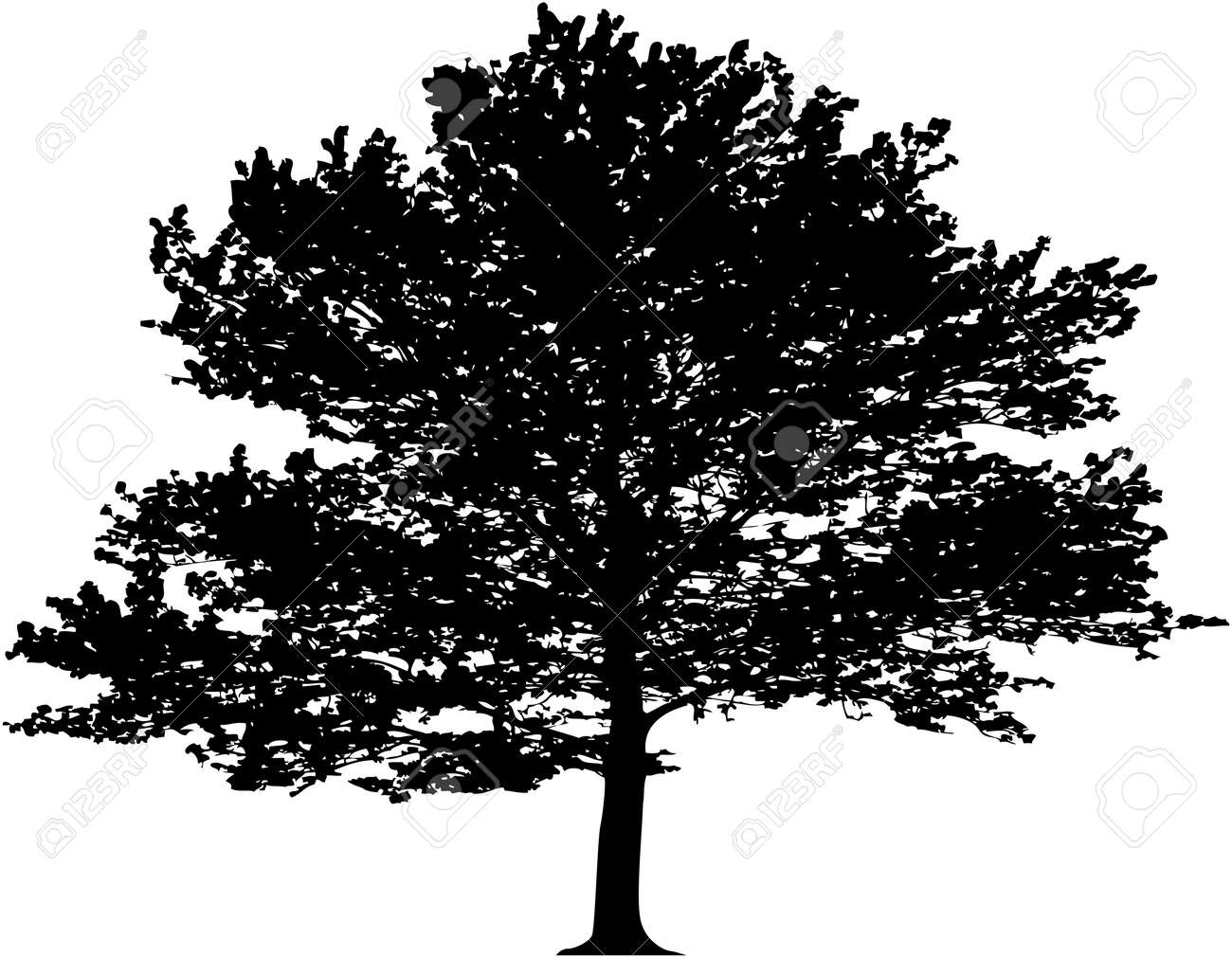 Vector tree. This image is a vector illustration and can be scaled to any size without loss of resolution - 4465831