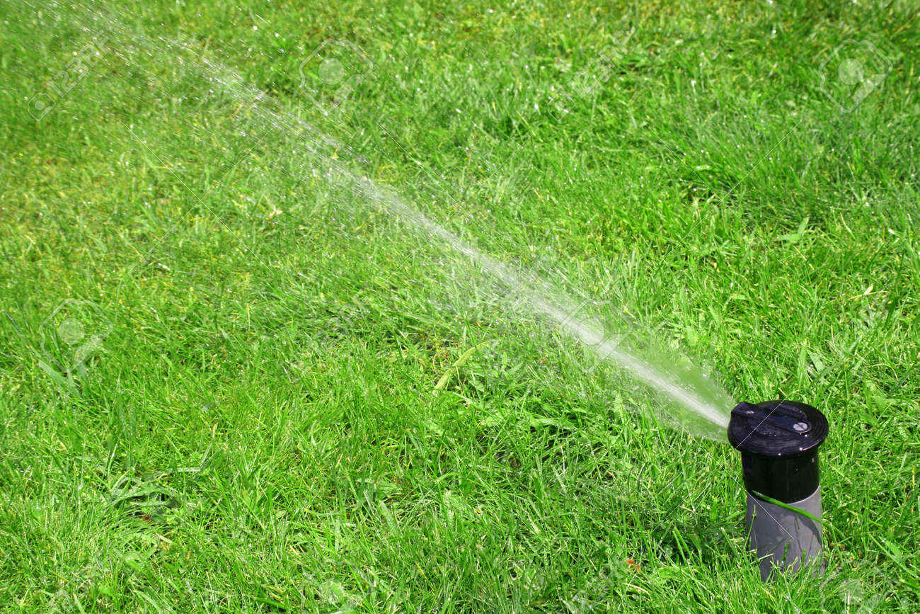 Close Up Of Lawn Sprinkler With Copy Space
