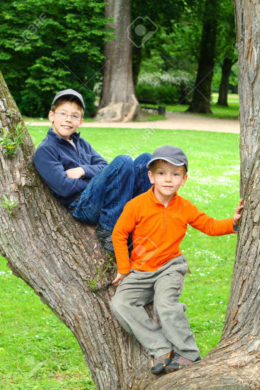 Smiling young brothers sitting in a tree - 8606366