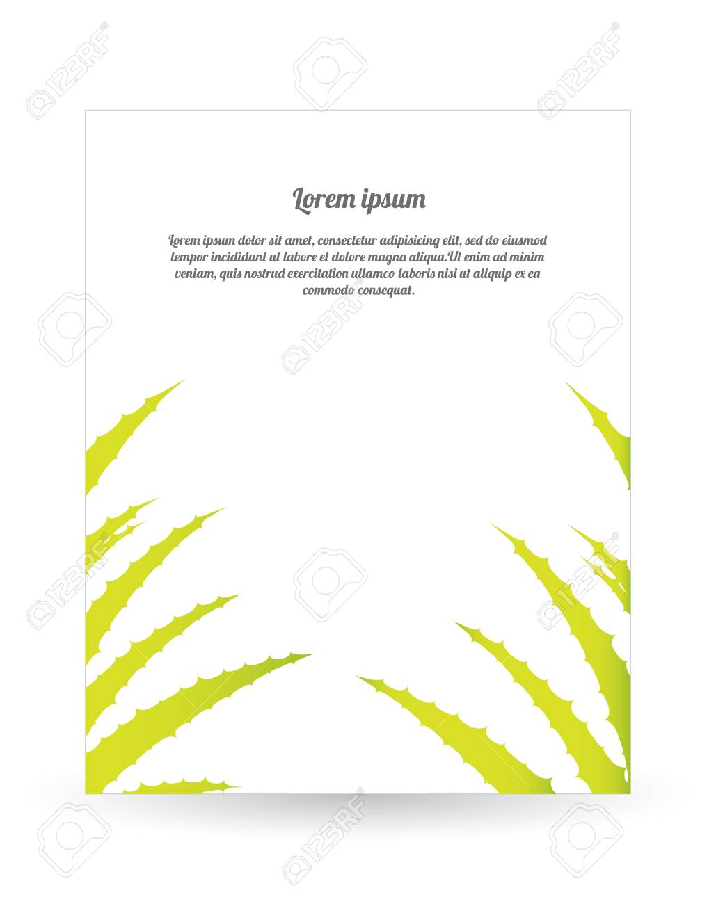 special flyer with aloe vera design Stock Vector - 20989988
