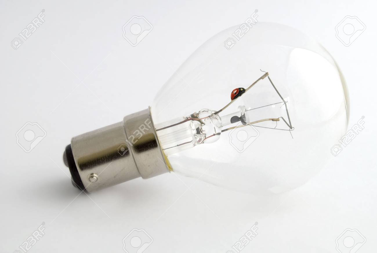 Ladybird trapped inside a bulb crawling on the filament Stock Photo - 3242121