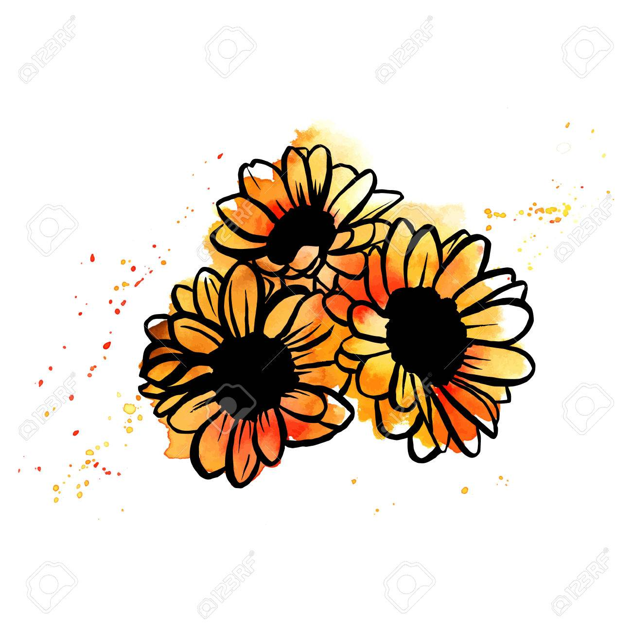 A Freehand Vector And Watercolor Drawing Of Bouquet Sunflowers With Splashes Paint