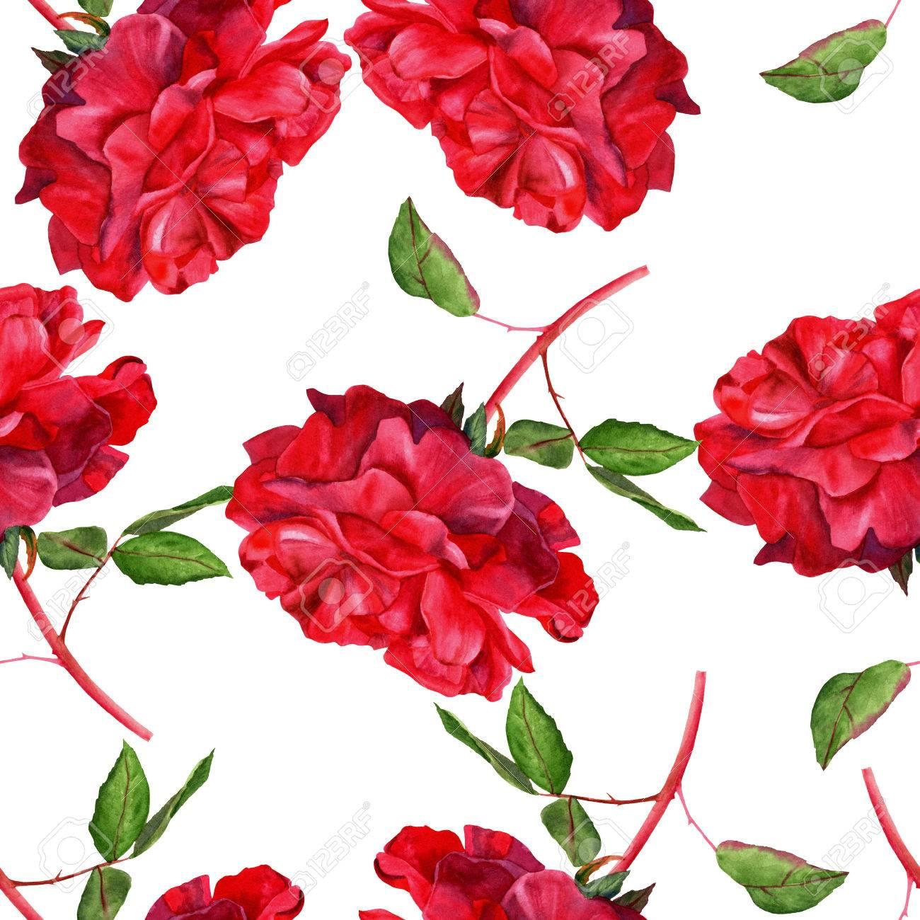 Un Modele Sans Couture Avec Un Dessin A L Aquarelle D Une Rose Rouge