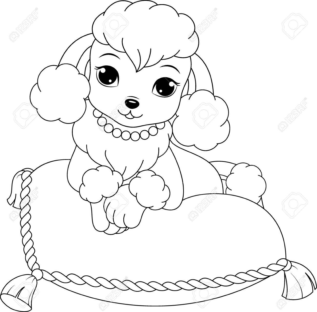 Lovely Poodle Coloring Page Stock Vector   61383223