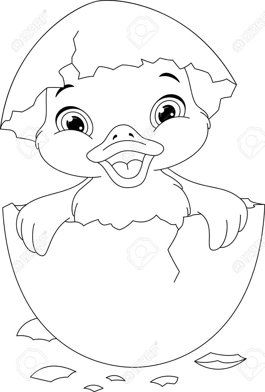 Duckling Coloring Page Royalty Free Cliparts, Vectors, And Stock ...