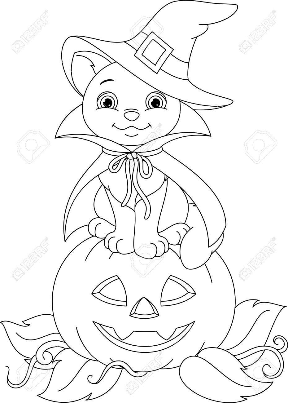 Bruja Gato Sentado En Una Calabaza, Colorear Página Ilustraciones ...