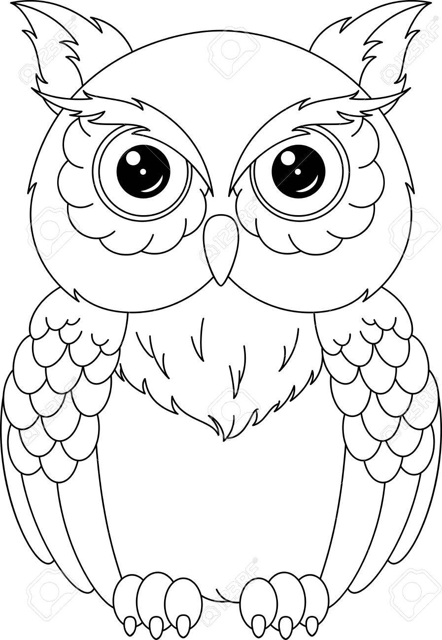 Owl Coloring Page Royalty Free Cliparts Vectors And Stock
