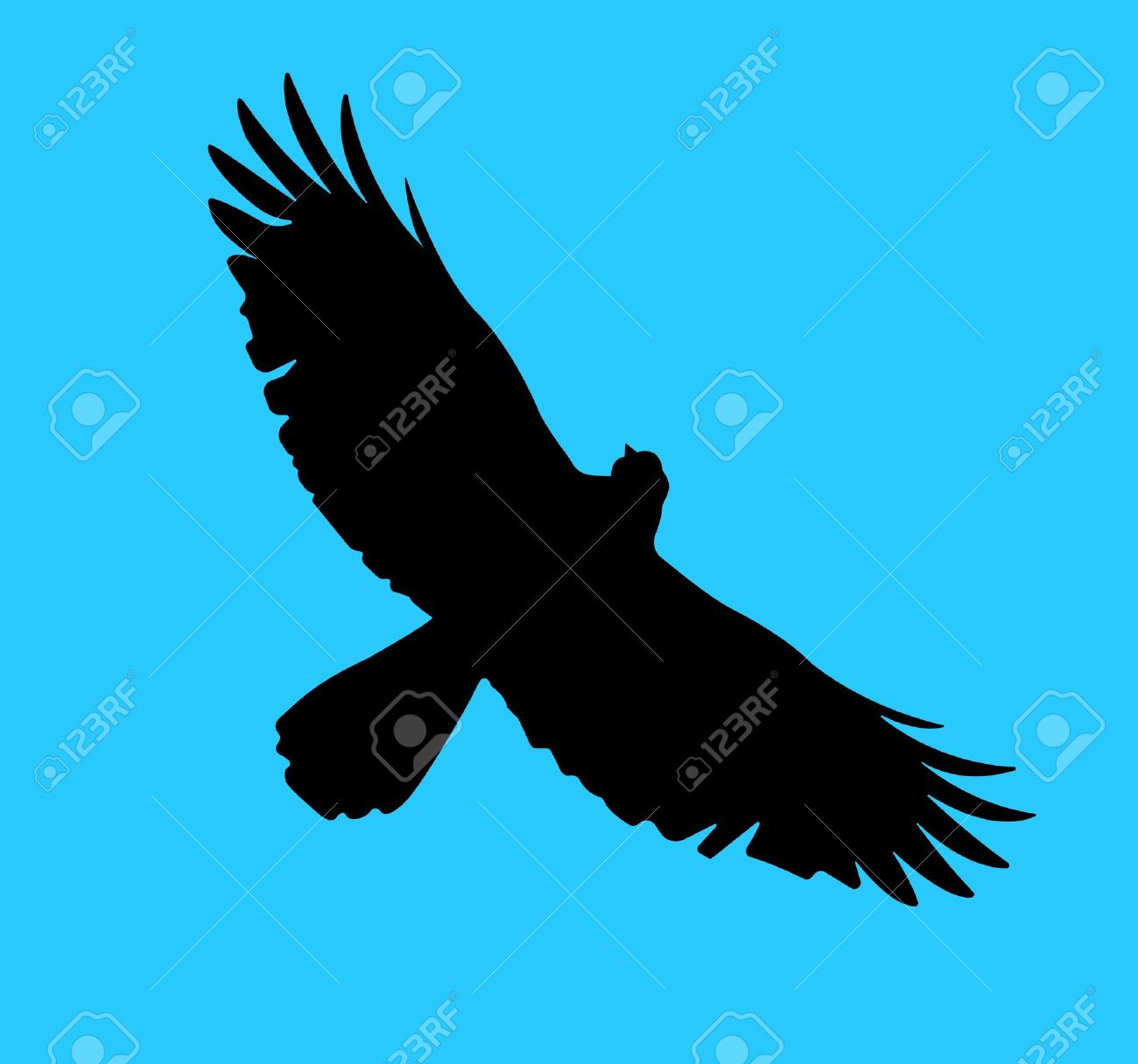 Silhouette of the bird of prey soaring in the blue sky Stock Vector - 19749914