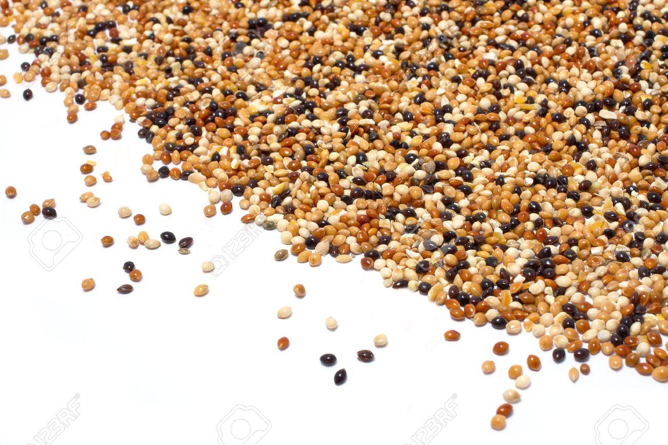 millet birdseed in heart shape on white background Stock Photo - 15400830