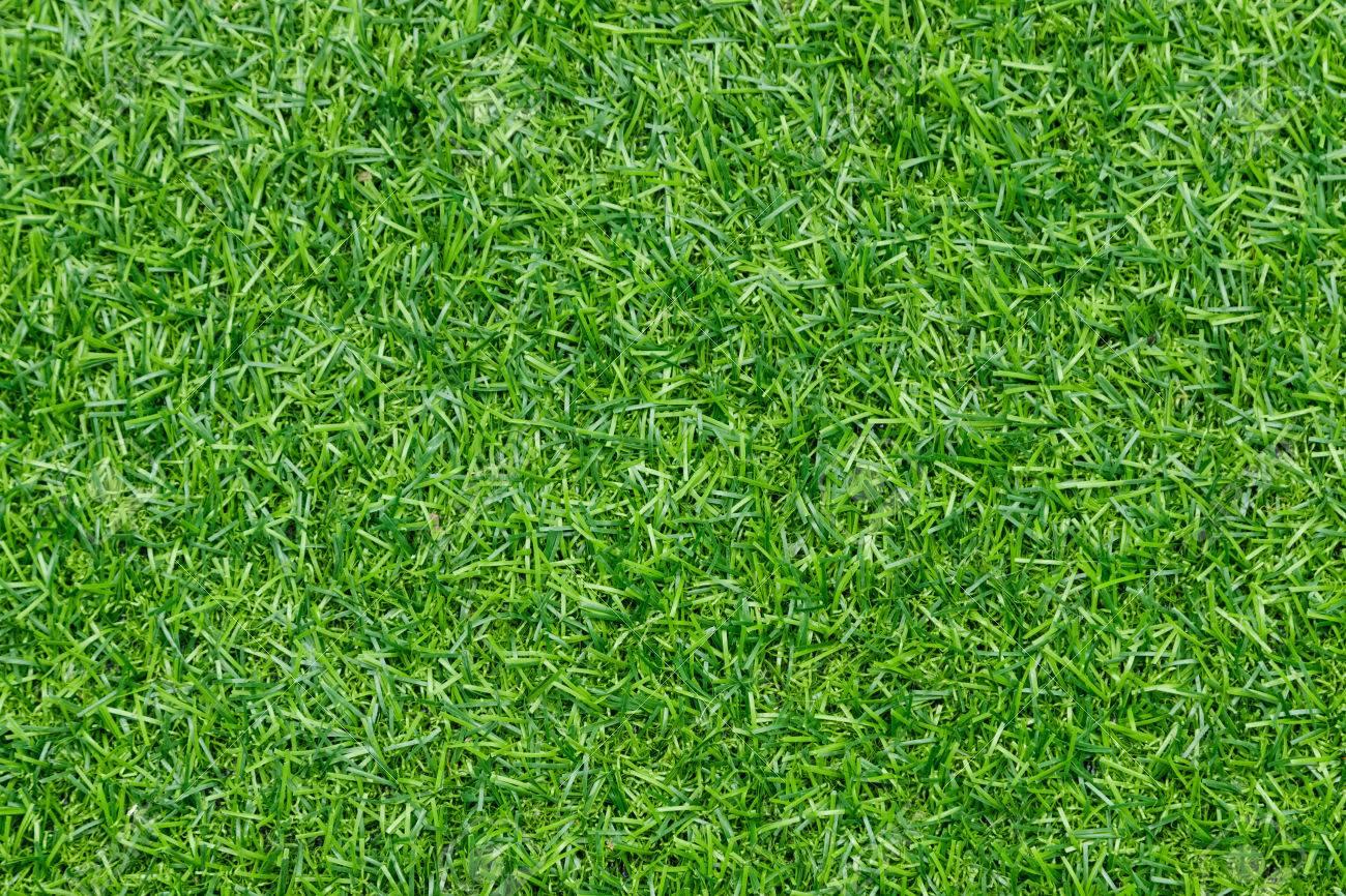 artificial grass backgroundgreen soccer field background stock photo 65995340 green c39 green