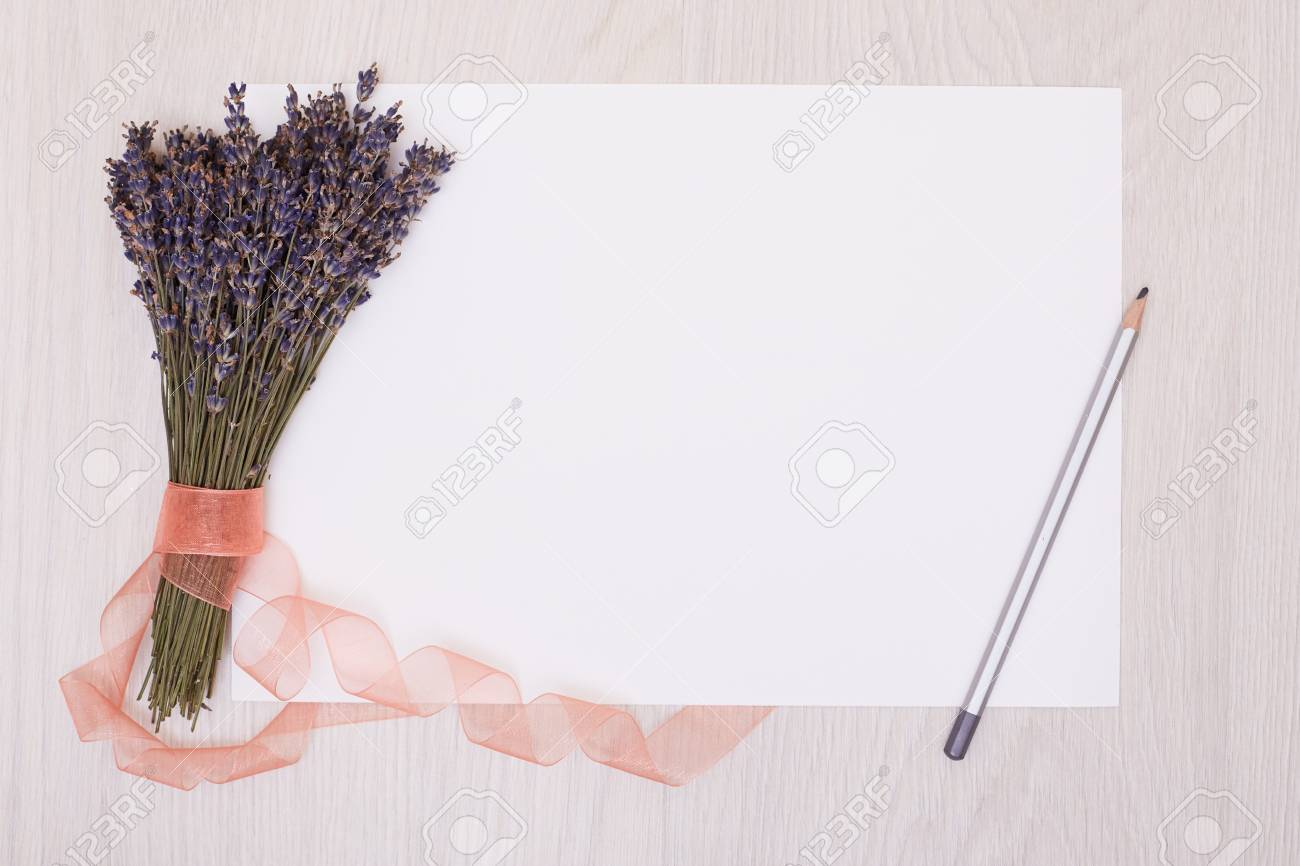 lavender flowers and empty photo album book cover floral frame from dried plants flat