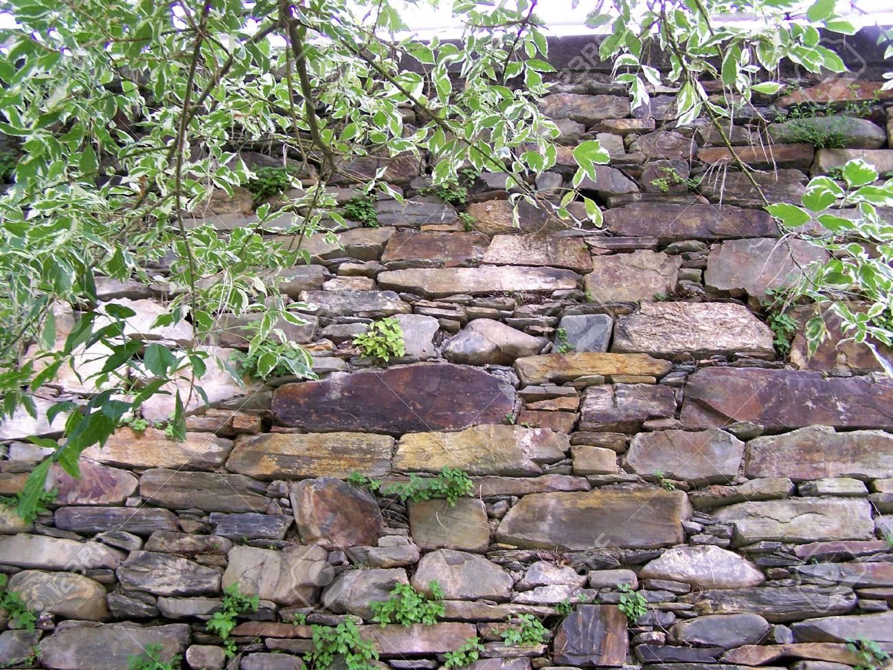garten: steinmauer aspekt lizenzfreie fotos, bilder und stock