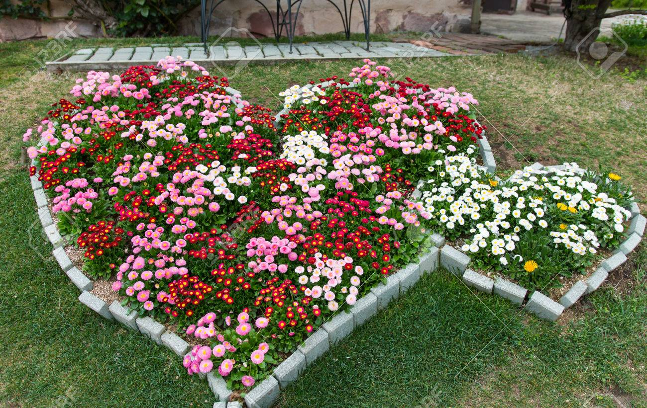Heart Shape Of Pink And Red Flowers Garden Beautiful Nature