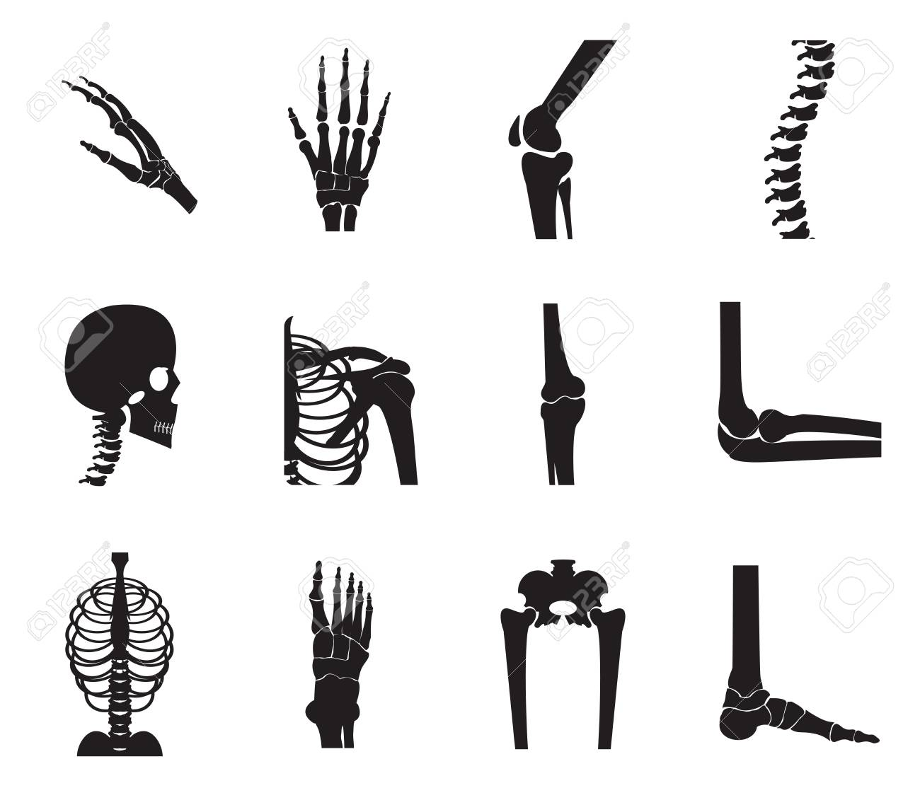 Orthopedic And Spine Icon Set On White Background Bone X Ray