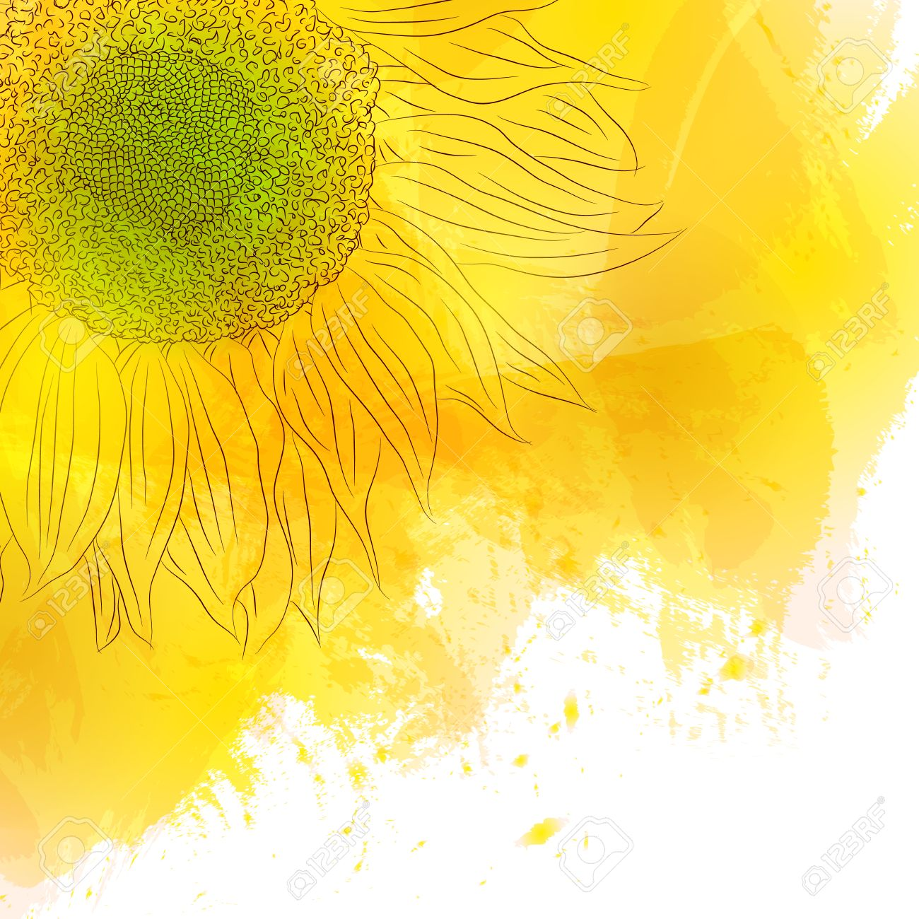 Sunflower bright sunny yellow flower on watercolor background bright sunny yellow flower on watercolor background design for invitation cards birthday with love save the date the spring style vector illustration stopboris Gallery