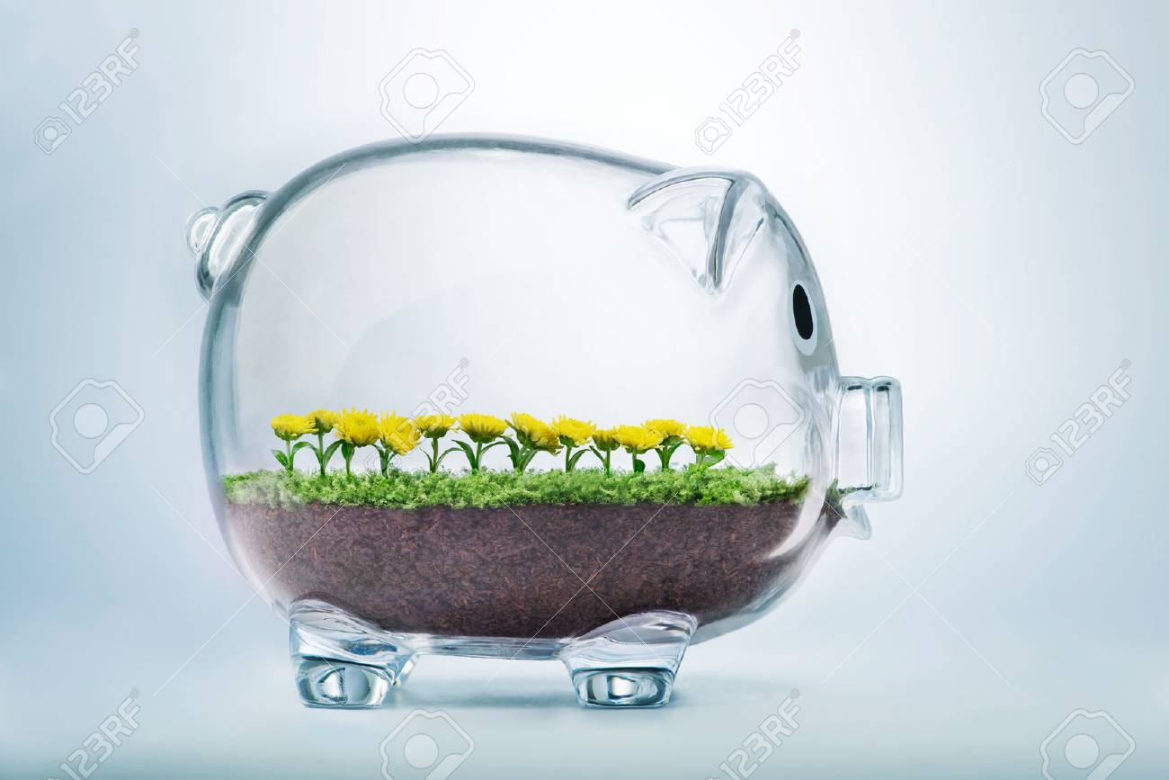 Prosperity concept with grass and flowers growing inside transparent piggy bank - 52519581
