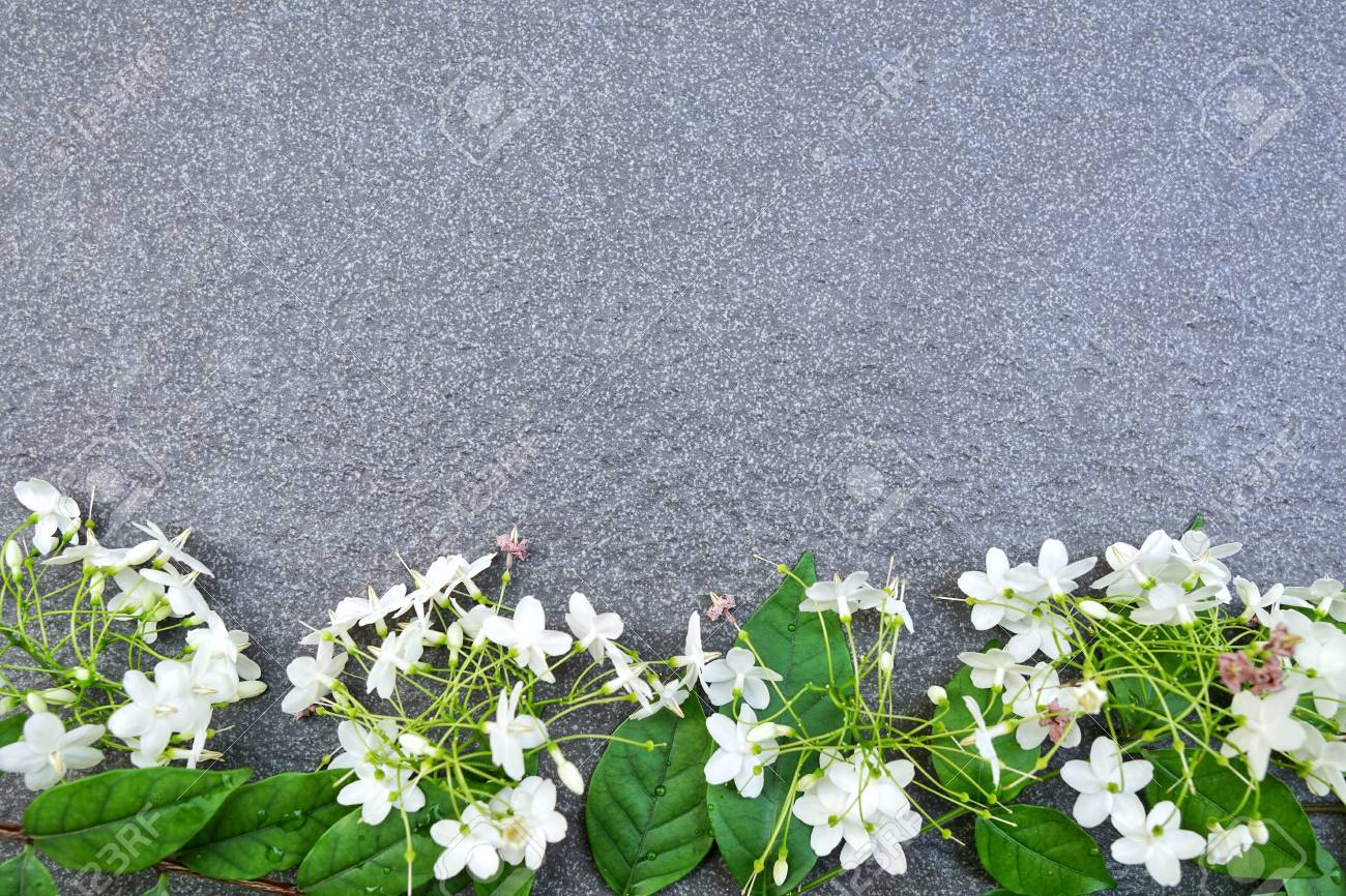 Fresh White Flowers And Green Leaves Frame On Tile Texture