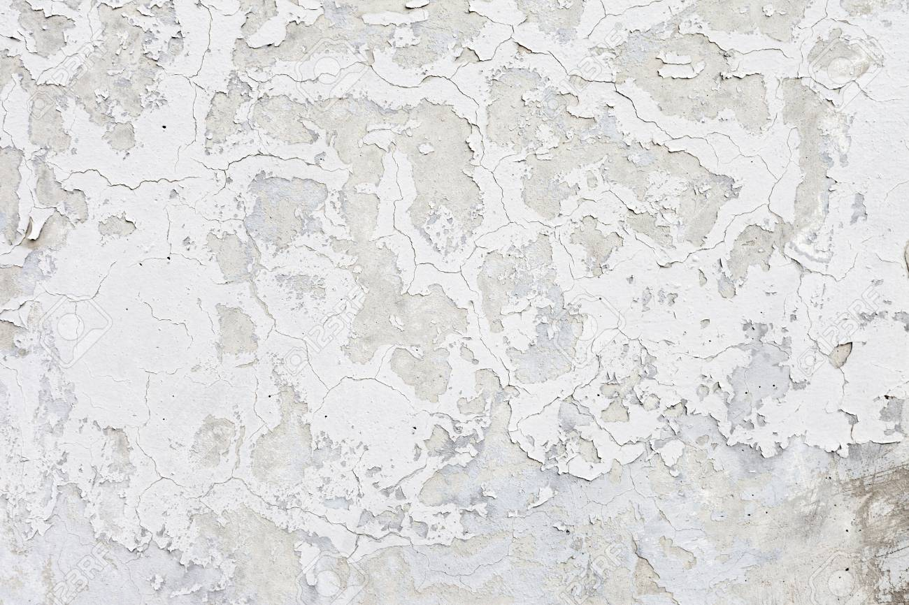 Grungy white background cement old texture wall Stock Photo - 24231298