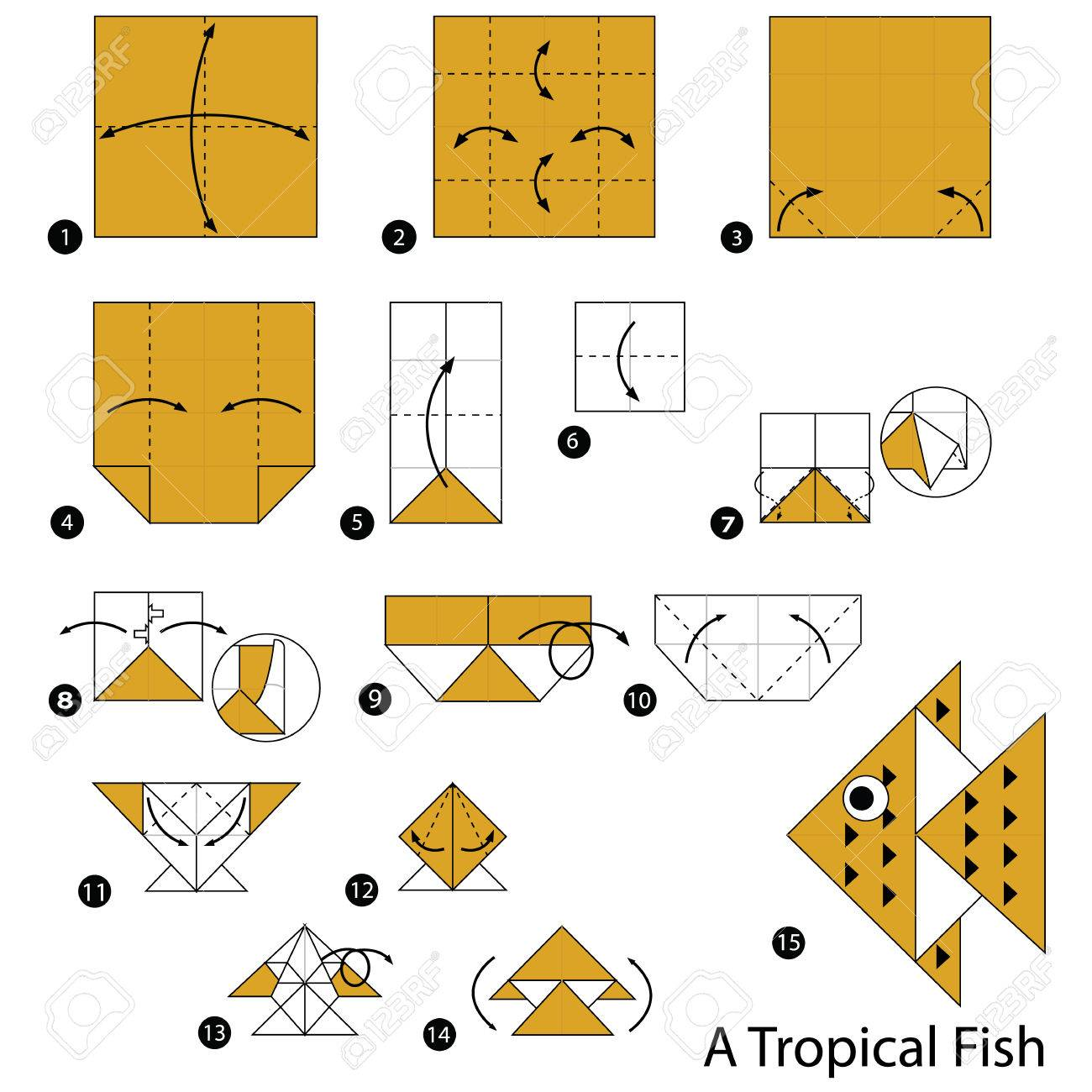 Step by step instructions how to make origami a tropical fish step by step instructions how to make origami a tropical fish stock vector 71139431 jeuxipadfo Images