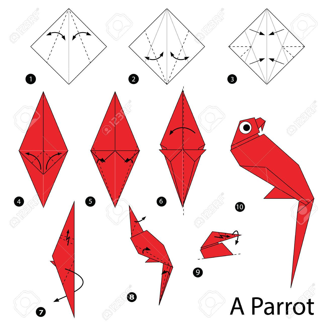 Step By Step Instructions How To Make Origami A Parrot Royalty Free