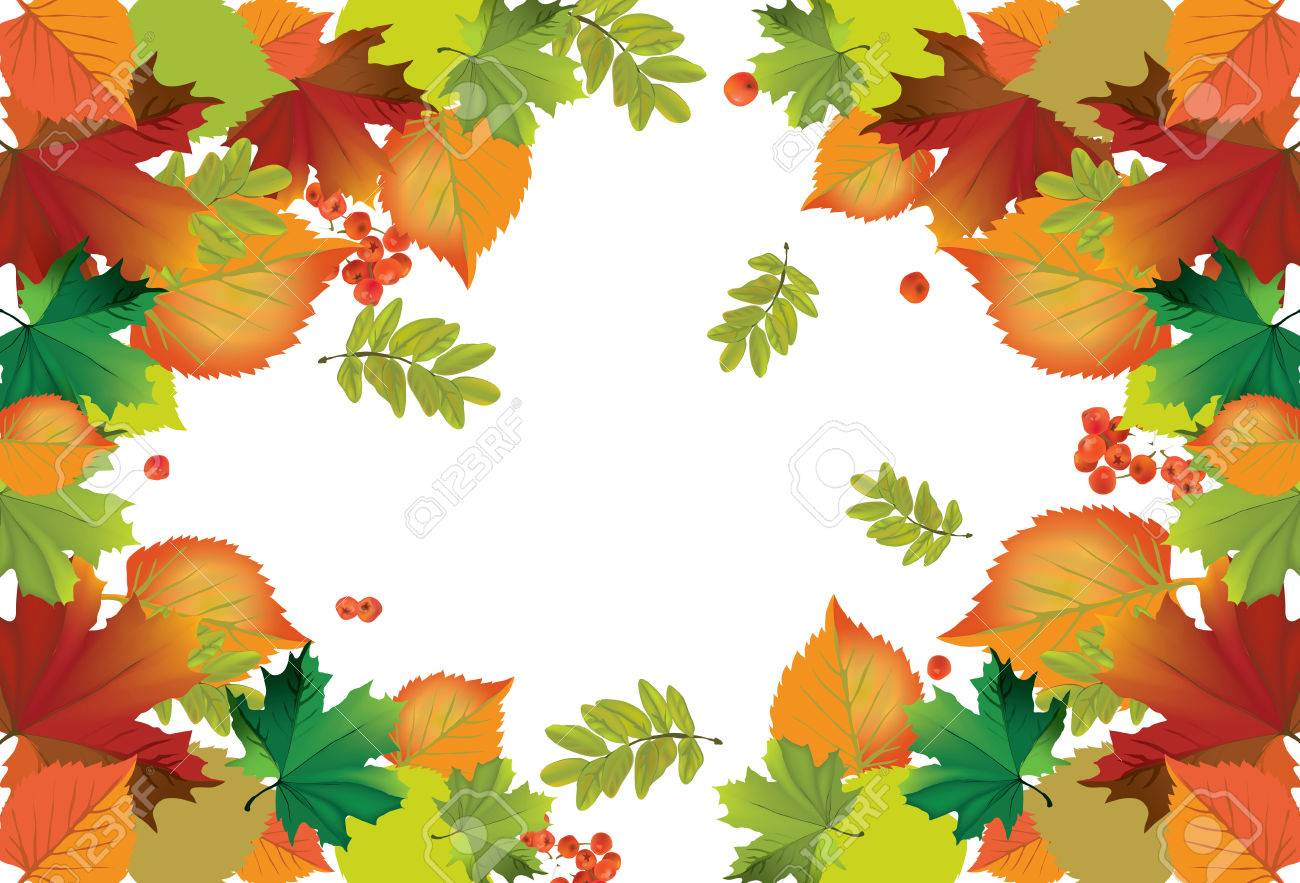 The illustration of autumn background with fallen leaves Stock Vector - 25206259