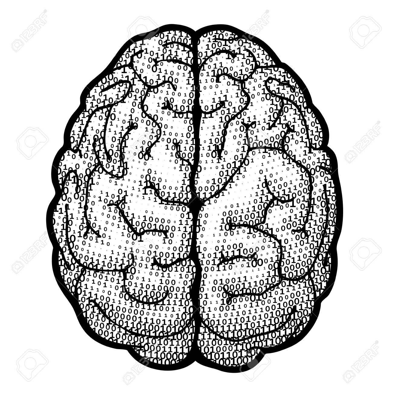 Top Blick Gehirn Bestehen Aus Binären Codes. Eps8. CMYK. Organisiert ...