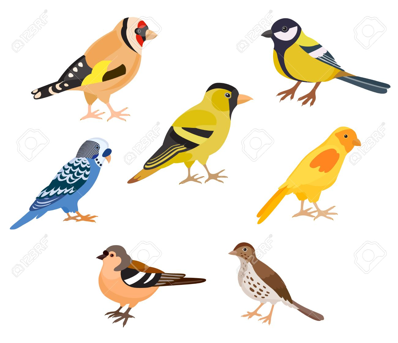 A Set Of Colorful Birds Isolated Vector Illustration Goldfinch Royalty Free Cliparts Vectors And Stock Illustration Image 69680851