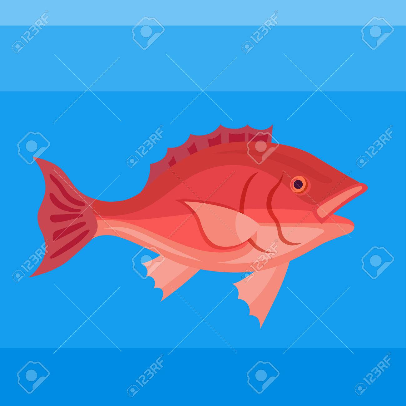 Colorful Icon Sea Red Snapper On The Blue Background Royalty Free ...