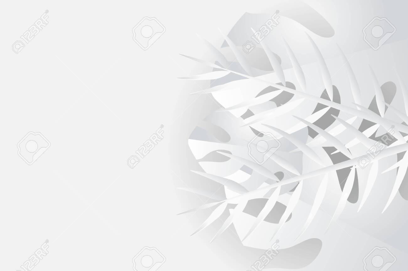 Tropical leaves in white and gray shades, summer background, vector image - 148777737