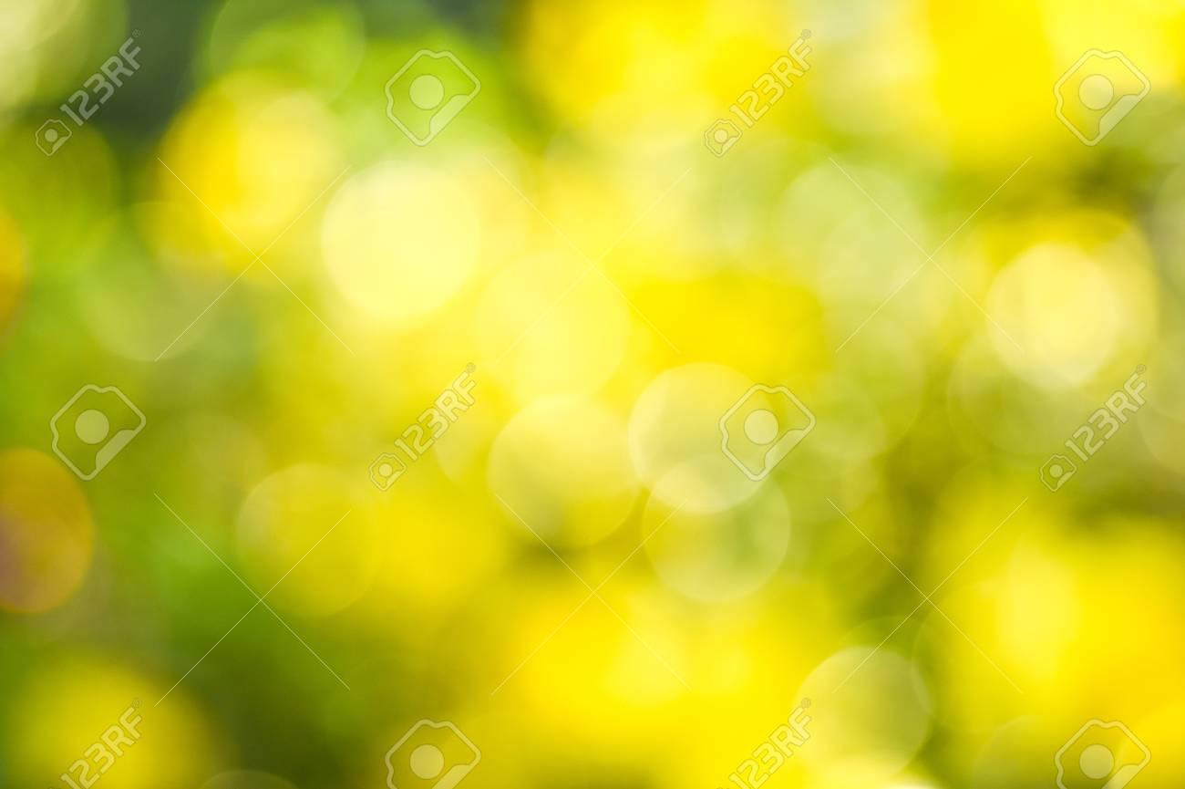 Summer Garden Blurred Bokeh Background Abstract Nature Wallpaper