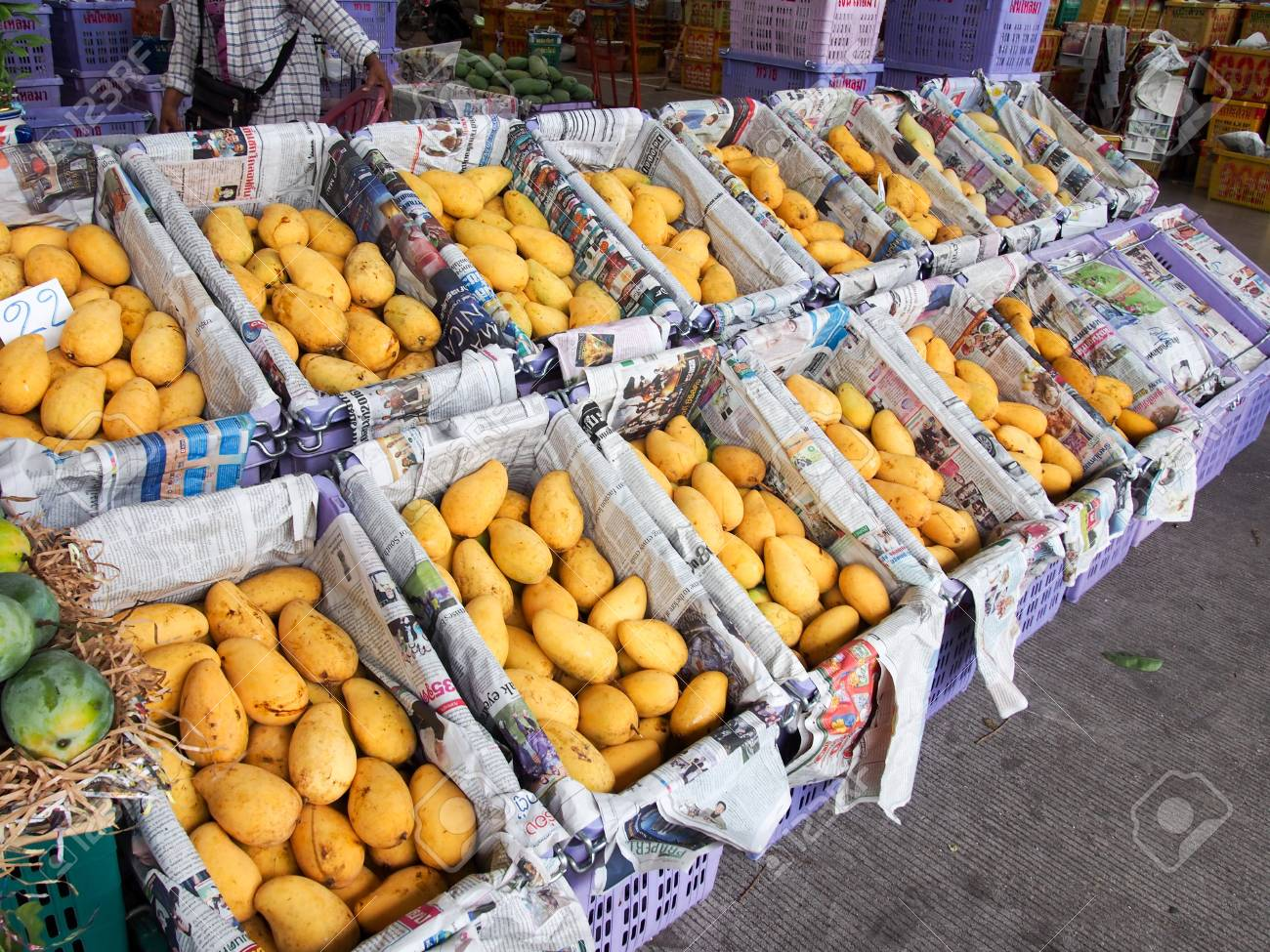Wholesale Mango Stock Photo, Picture And Royalty Free Image  Image