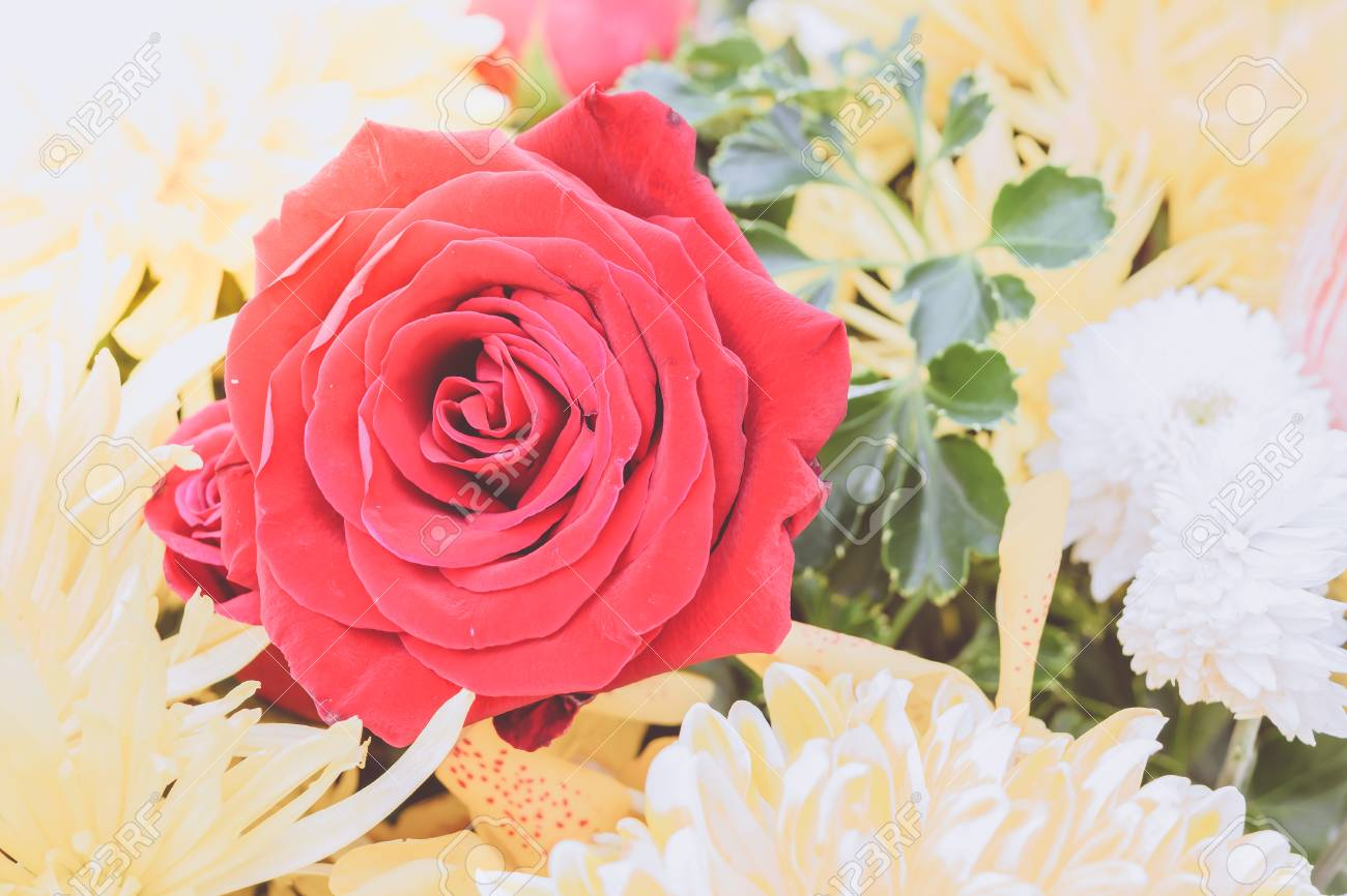 Beautiful red rose flower in a bouquet naturally beautiful flowers beautiful red rose flower in a bouquet naturally beautiful flowers in the garden process izmirmasajfo