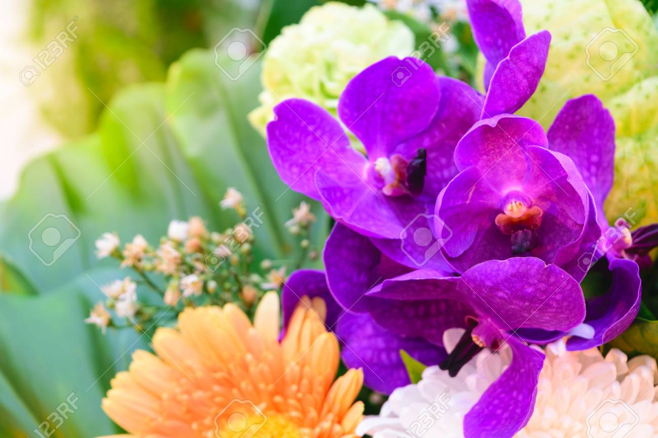 Beautiful Purple Orchids Flower In A Bouquet Naturally Beautiful