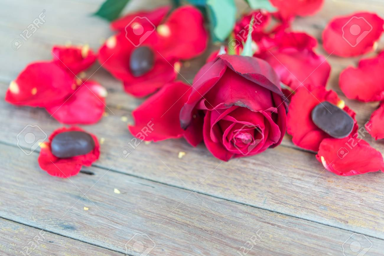 Red Rose Flower Nature Beautiful Flowers From Garden Petal Of