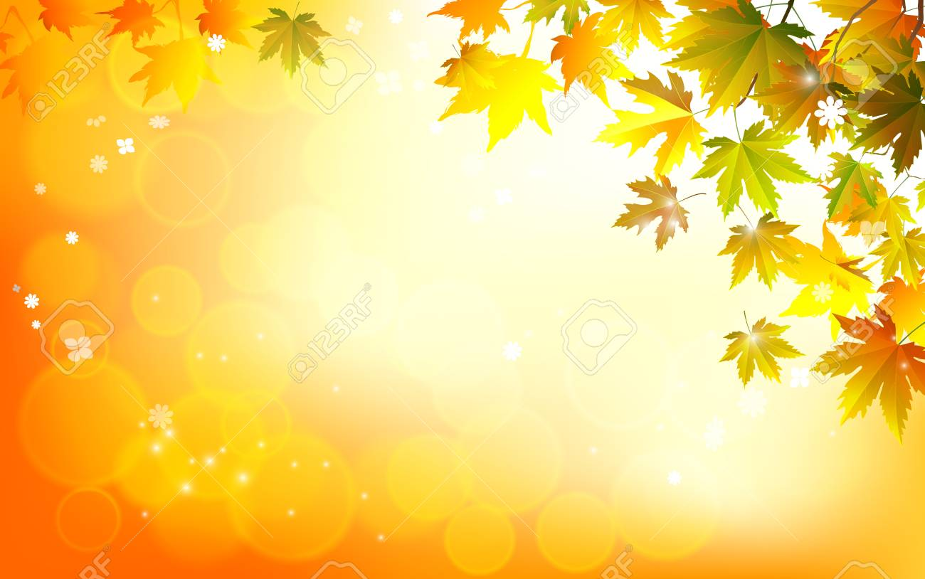 Fall Background For Autumn Season With Collection Of Orange And