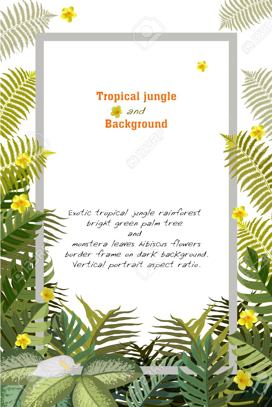 Tropical Leaves Theme Greeting Card Template Vector Illustration