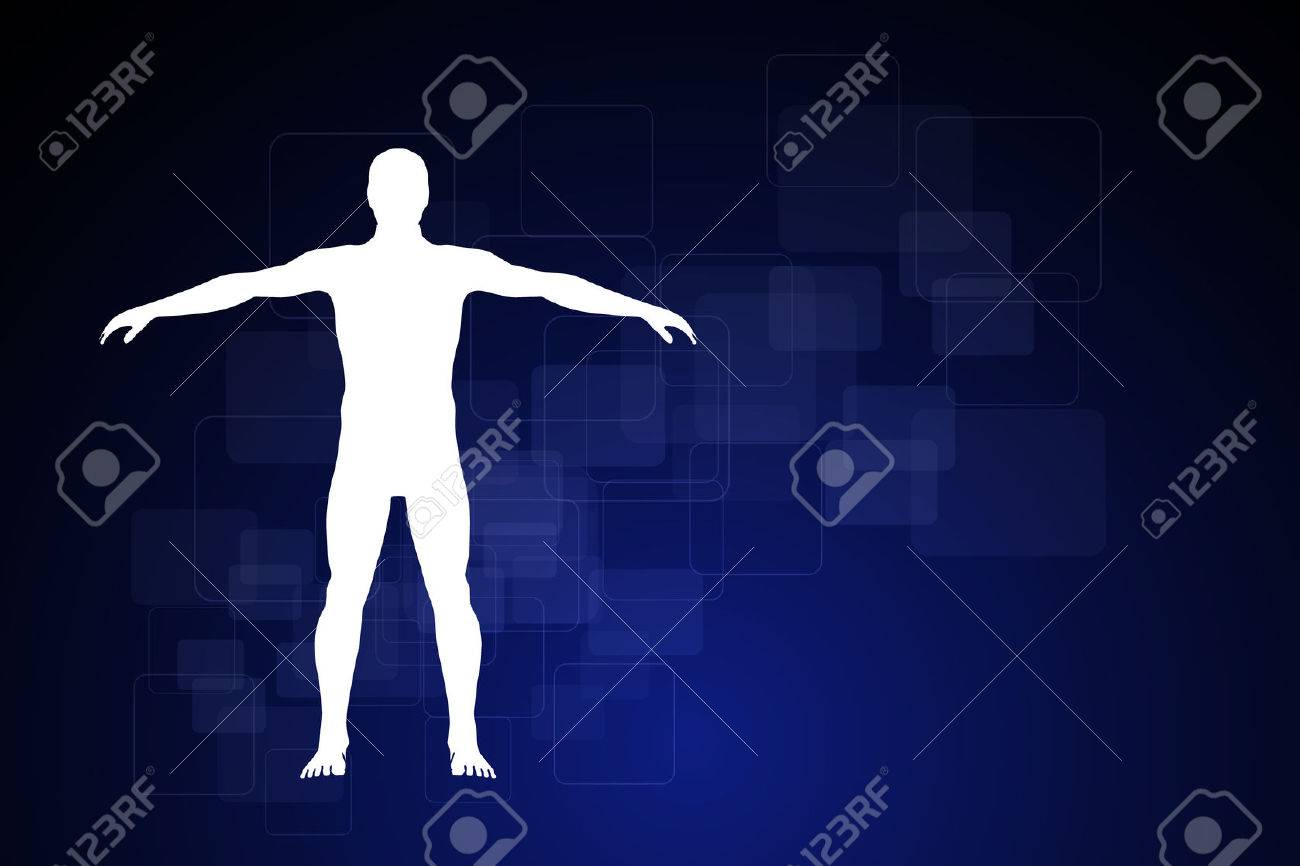 Human Body Diagram Stock Photos Royalty Free Images Schematic Description Of The Photo