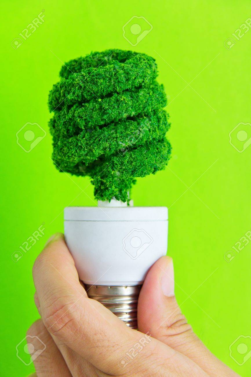 hand holding eco light bulb energy concept Stock Photo - 12880347