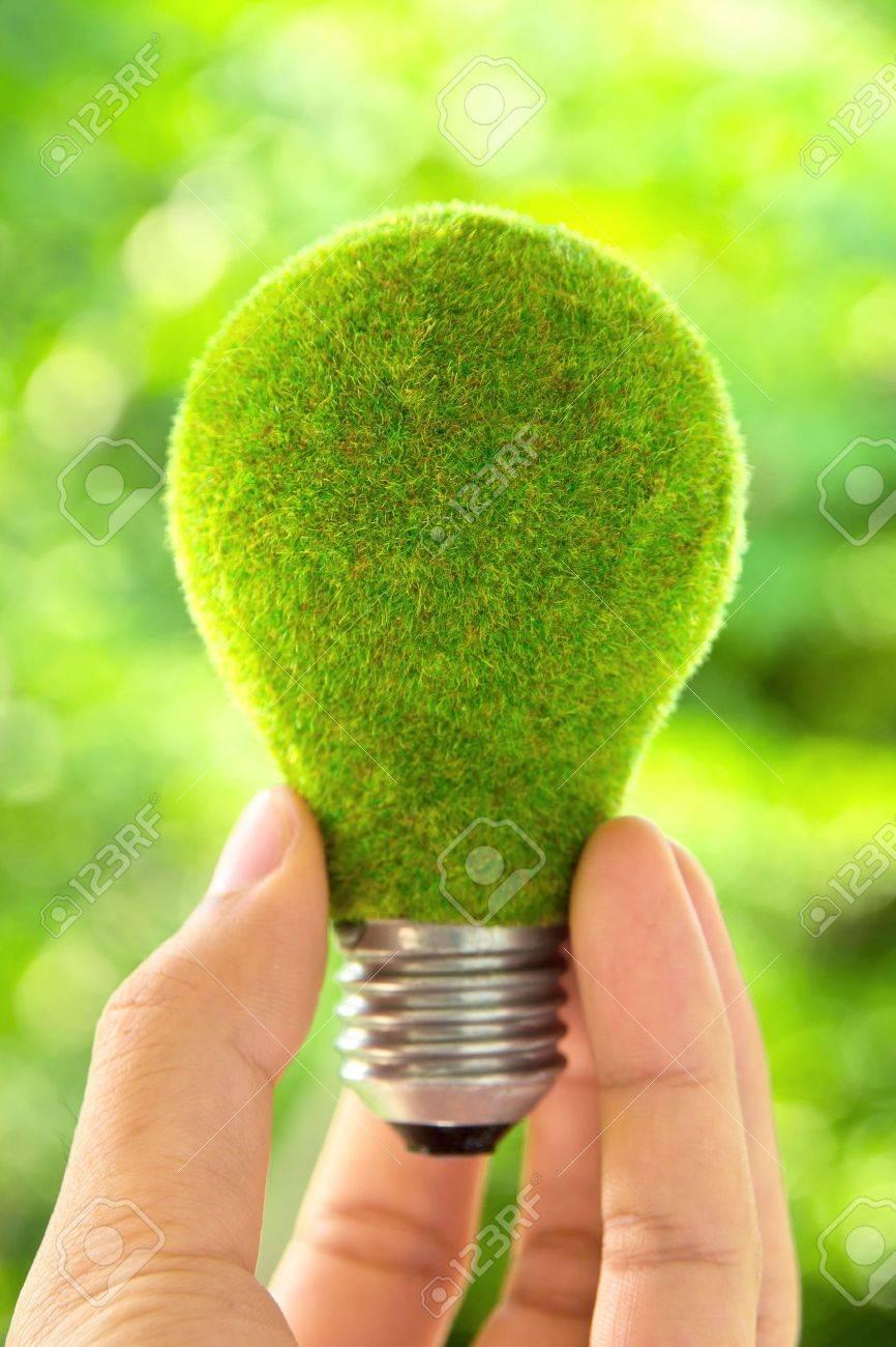 hand holding eco light bulb energy concept - 13295210