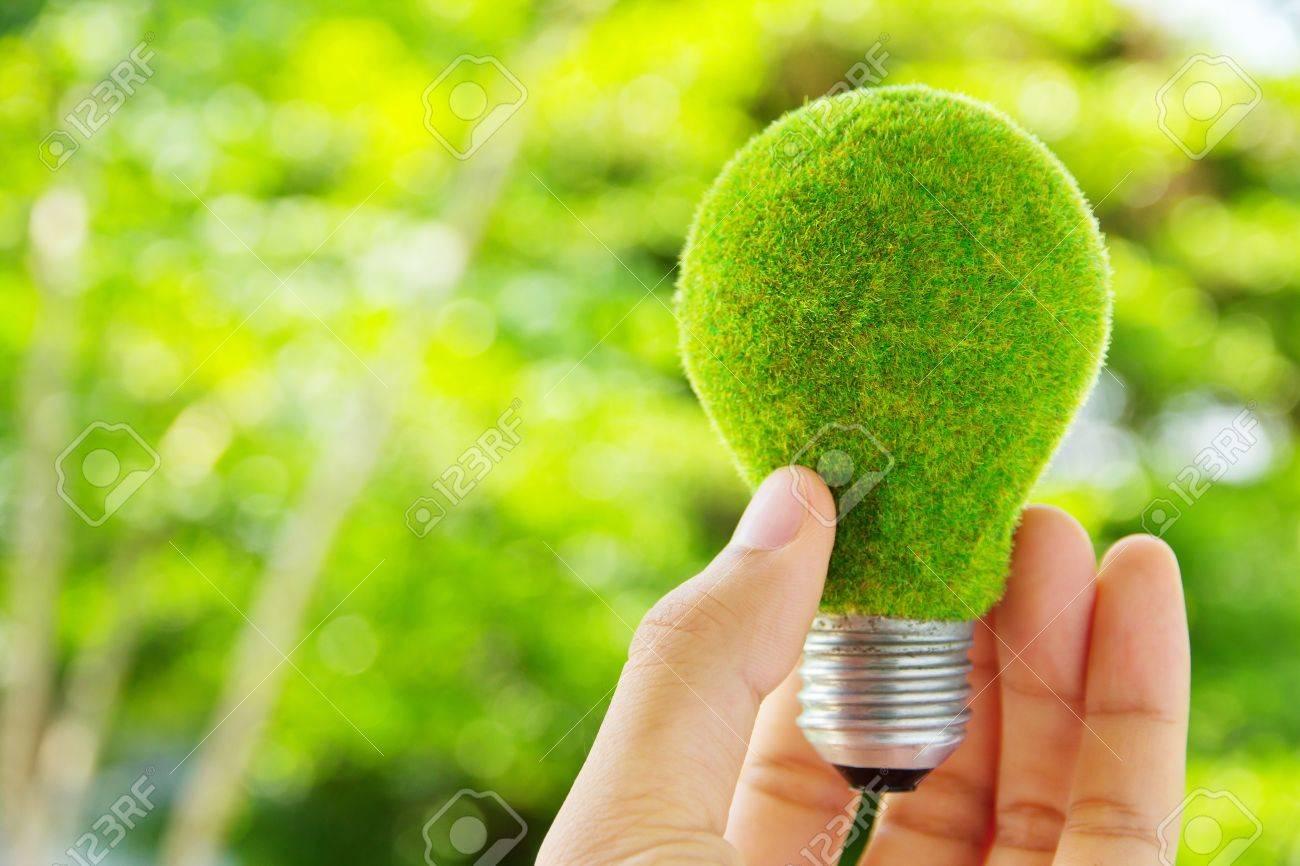 hand holding eco light bulb energy concept - 13295207