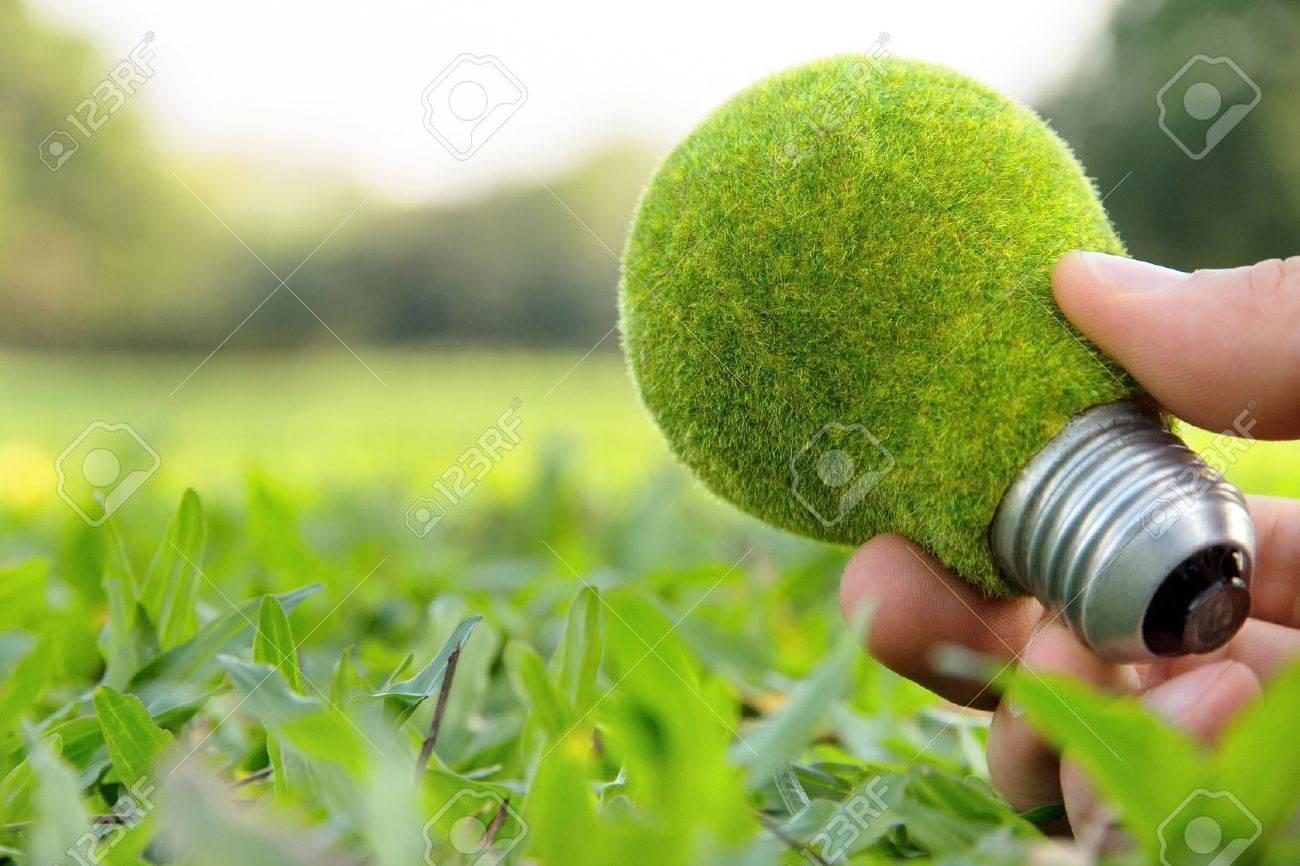 hand holding eco light bulb - 17980192
