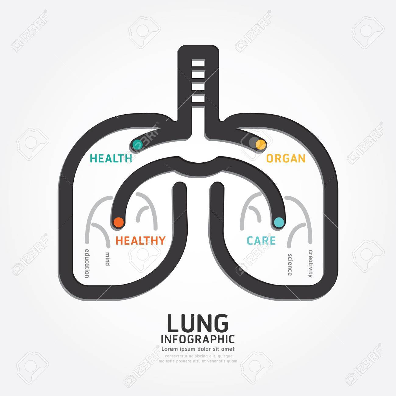 infographics vector lung design organ concept diagram line style, Powerpoint templates