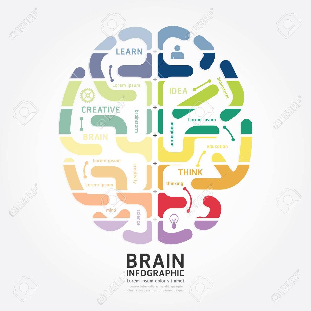 Plantilla Infografía Vector Cerebro Diagrama Diseño Estilo De Línea ...