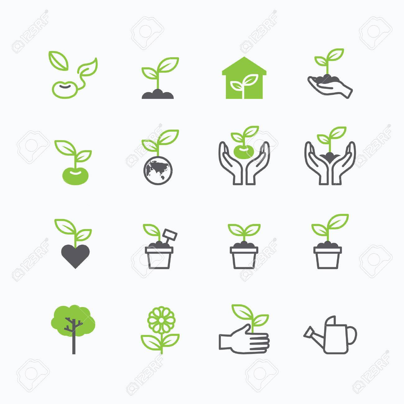 plant and sprout growing icons flat line design vector Standard-Bild - 43568365