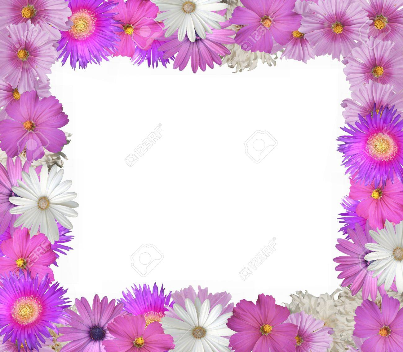 Pretty frame or border of pink and white spring and summer flowers pretty frame or border of pink and white spring and summer flowers stock photo 12726389 mightylinksfo
