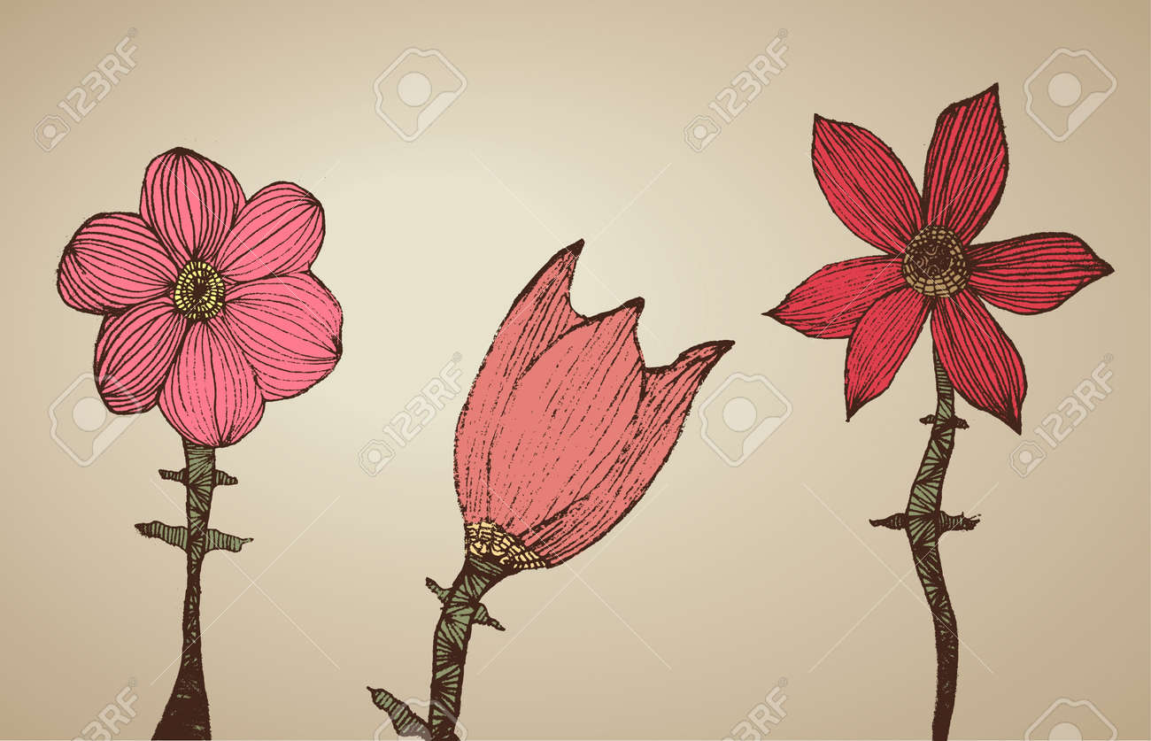 Hand Drawn Flowers Stock Vector - 10775828